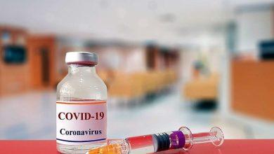 """Photo of دواء الملاريا و""""كورونا"""".. دراسة جديدة تحسم الجدل"""
