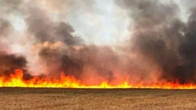 Photo of حريق يأتي على 16 هكتارا من الحبوب