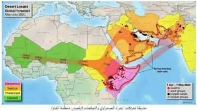 Photo of وزارة الفلاحة : بـــــلاغ حول الوضع الحالي للجراد الصحراوي