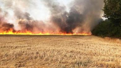 Photo of القصرين: حريق بأرض فلاحية يأتي على 900 بالة تبن