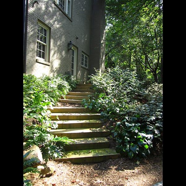 Wooden steps from house to mulch landing at a north Atlanta residence in Buckhead, landscape designed by Tunnell and Tunnell Landscape Architecture.