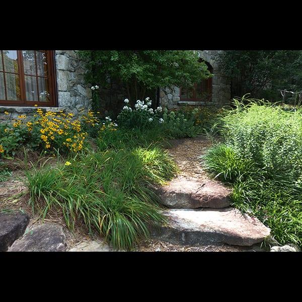 lake burton stone seps