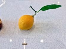 destructure_citron_cedric-grolet_le-meurice_01