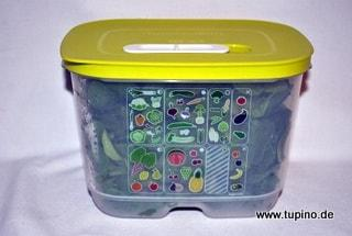Tupperware KlimaOase - A181