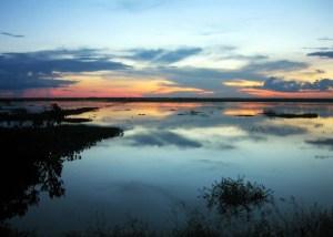 Los hermosos humedales en el Río Orinoco, de los Llanos venezolanos