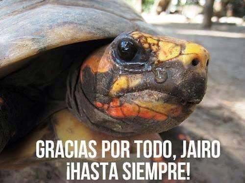 Foto cortesía de la Página en Facebook Jairo Estamos con Usted