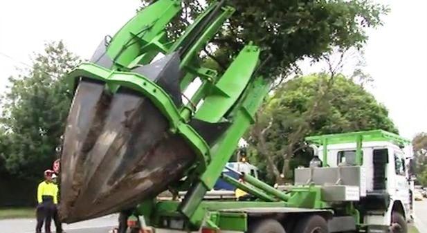 Máquina que puede replantar árboles sin dañarlos