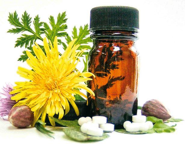 Union de la  naturaleza y la medicina