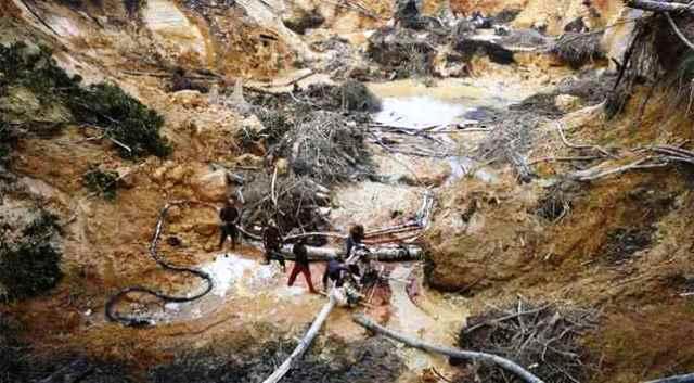 La destrucción del Arco Minero en Venezuela