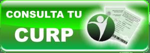 conslCurp