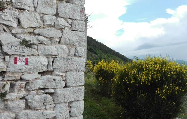 spoleto-muro