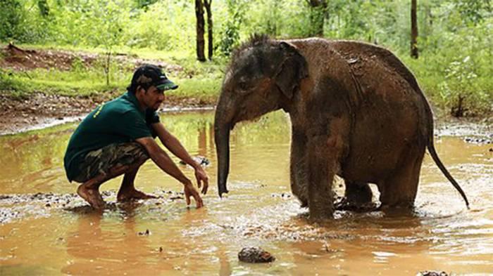 Dokumentar om Sri Lanka