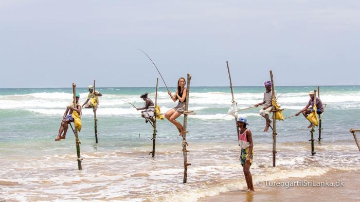 Pælefiskere på Sri Lanka's sydkyst (Nå ja, og så måske en enkelt turist)