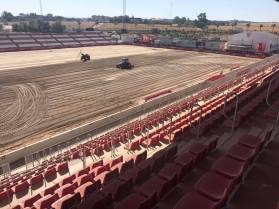 Turf Green - Estadio Jesus Navas 01