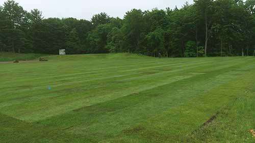 sod installation on an athletic field