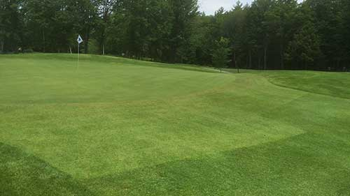 sod installation portfolio image of greens repair in Concord NH