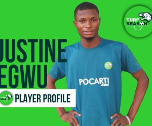 Player Profile - Justine Egwu