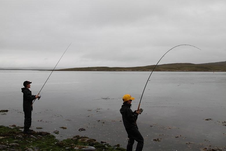 Turgutta fisker småsei og stor makrell