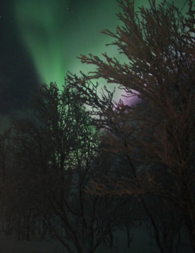 Nordlyset blafrer og jeg prøver meg som nordlysfotograf. Vanskelig..
