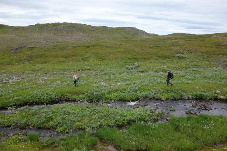 Tobias og Ståle følger et bekkefar