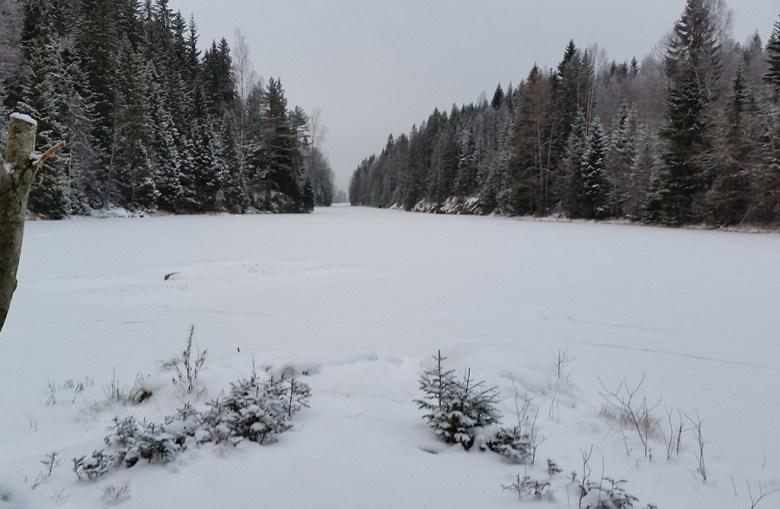 Noen skøyteløpere hadde fulgt land innerst i dammen