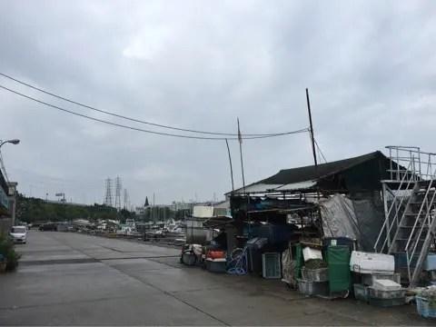 堺出島漁港内1