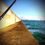 【へちこがね】初尼ピー(尼崎フェニックス)からの大阪湾奥ランガン。渋いながらも貴重な1枚ゲット。(手抜き記事)