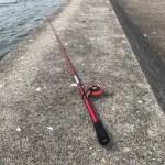 【へちワカメ】神戸沖堤防ワカメ直下でとりあえず釣れたものの。。。厳しいですなぁ(´;ω;`)