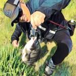 【ヘチ釣り】たまや渡船さんで北港夢洲スリットへ!平日も日曜日も釣り三昧でなんとかおチヌ様ゲット?!