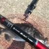 Re.禁断の平日釣行でポーアイ沖へ。スケスケのタフコンディションでなんとかミッションコンプリート