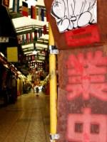和歌山県有田川でアマゴ解禁!2015年は荒食い!?
