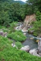 福島県久慈川の渓流釣りが2015年も解禁しました!