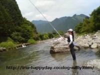 栃木県小山市思川でも鮎釣り2015が解禁!釣果も良し!