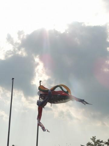 四万十川上流など高知県内3河川で鮎漁解禁!