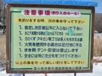 苫小牧の錦大沼でワカサギ釣り2016解禁!今年は昨年以上!