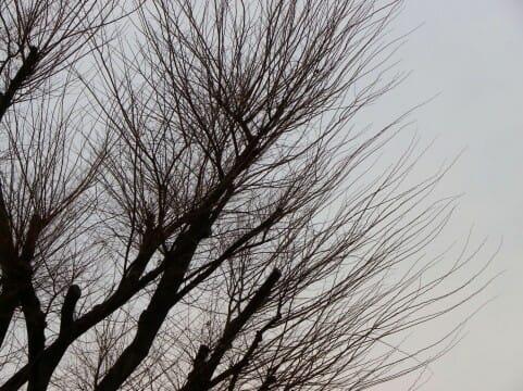那須塩原の箒川でフライ&ルアーエリア解禁2016!!