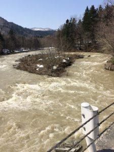渓流 濁流