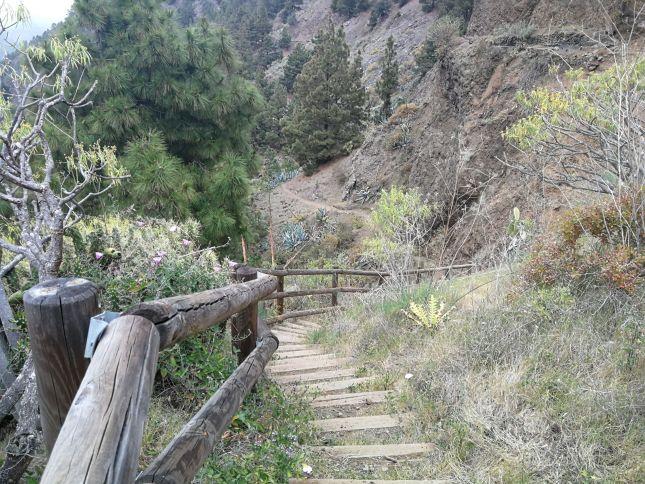 Parte del sendero del Mirador de la Cancelita