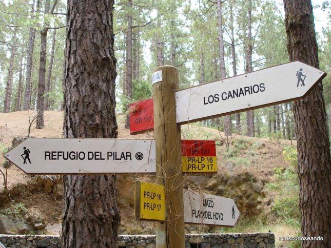 SENDEROS DE LA PALMA NO DEJAN INDIFERENTES