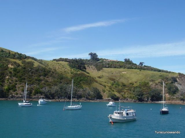 Mejores destinos para 2016. ISLA WAIHEKE. AUCKLAND. NUEVA ZELANDA