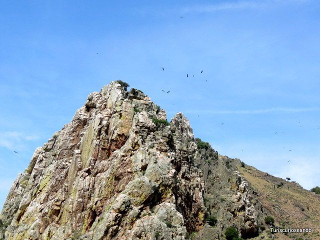Visitar el Parque Nacional de Monfragüe