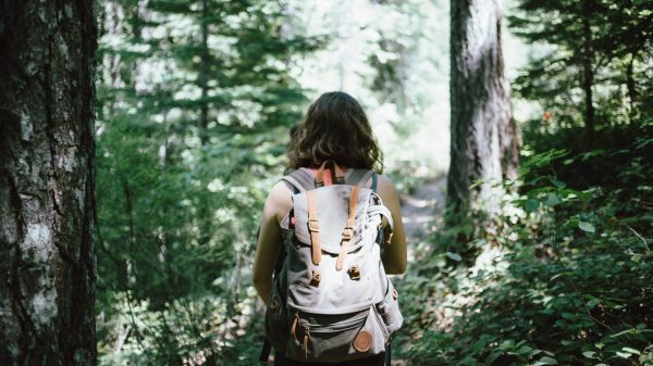 På vandretur i skoven. (Arkivfoto: Jake Melara)