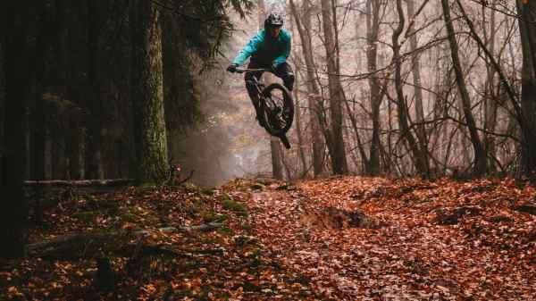På mountainbike i skoven. (Arkivfoto: Julian Hochgesang)