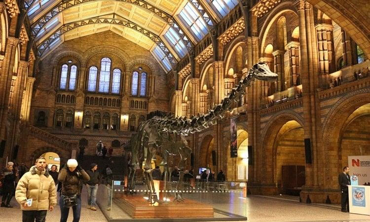dentro do museu de historia natural de londres