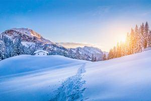 alpes suicos