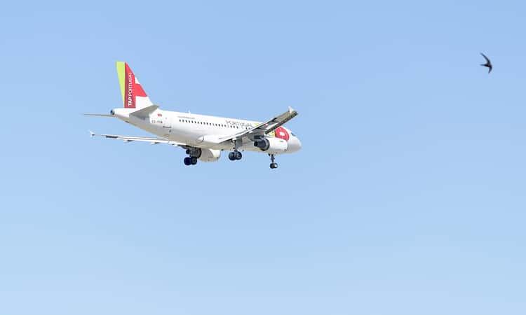 Companhia aérea para Portugal