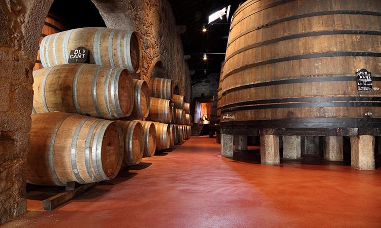 adegas de vinho do porto