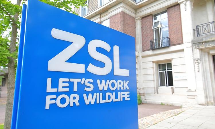 conheça o london zoo