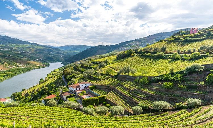 regiao do rio douro