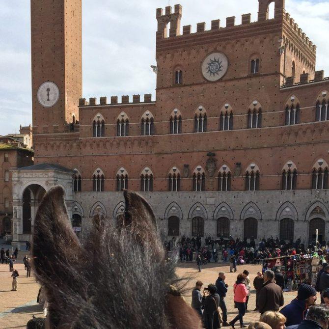 A cavallo a Siena
